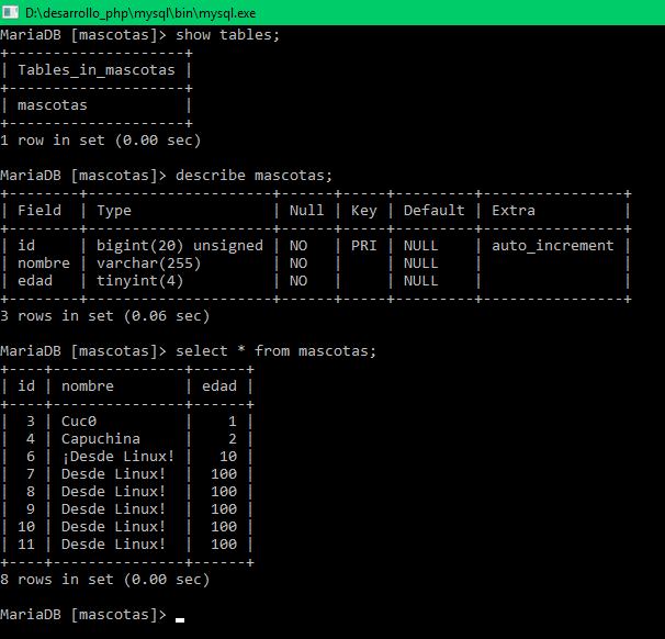Base de datos desde CLI