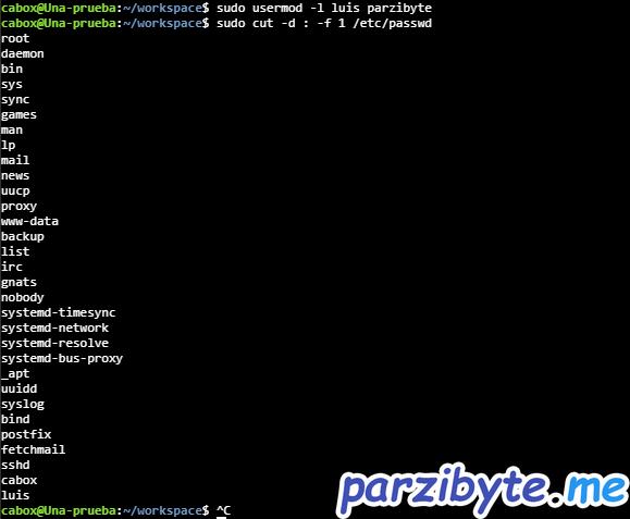 Editar nombre de usuario en Linux Ubuntu