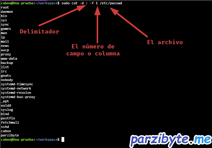 Listar únicamente los nombres de usuario en Linux Ubuntu