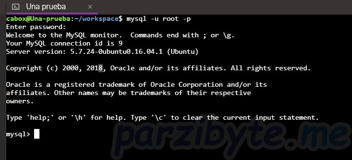 Paso 6 - Iniciar sesión con MySQL