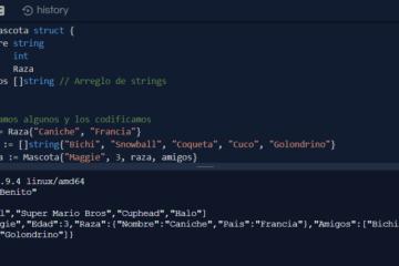Codificar y decodificar JSON en Go con Marshal y Unmarshal