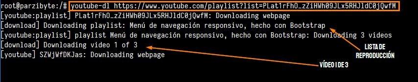 Lista de reproducción descargada de YouTube con youtube-dl