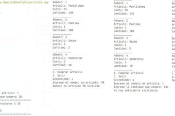 Ejecución del programa en C++. Manejo de todos los casos, compra, existencia, etcétera