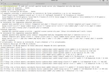 Instalando PHP, Apache y MySQL (LAMP) en Linux