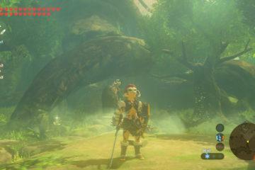 Zelda BotW - Estado de Link