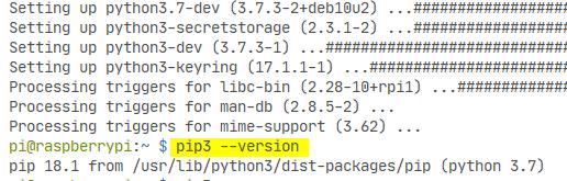 Comprobando versión de pip en Raspbian usando Raspberry Pi 4