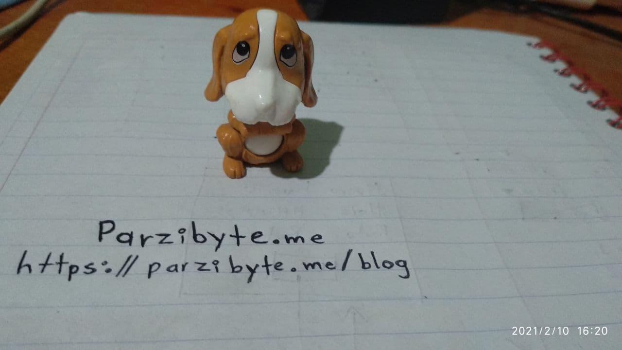 Foto de perro de juguete en alta resolución